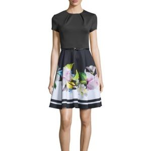 Ted Baker Vidaa Fit and Flare Dress